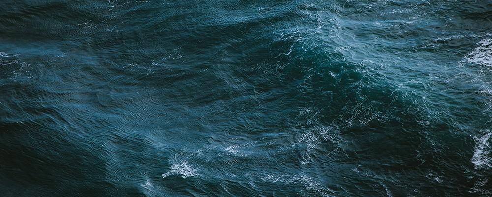"""""""Assim como não se move montanhas sozinho, a preservação dos oceanos é um trabalho que se faz em conjunto, diariamente""""."""